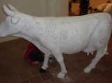 Pintando las Vacas Grandes - 026