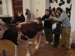 Pintando las Vacas Grandes - 061