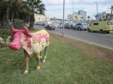 Reparto Vacas - 24